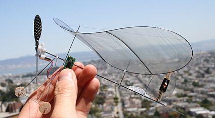 carbon-fiber-butterfly.jpg