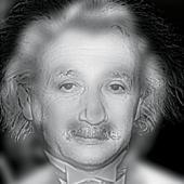 opticalillusion.jpg